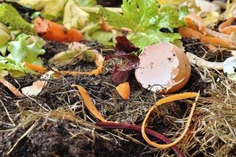 Cómo preparar un fertilizante casero