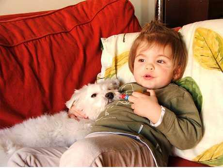 Bebé con un perro