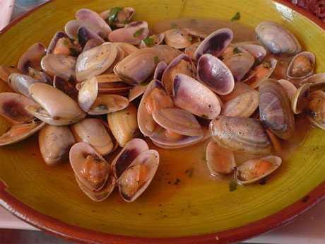 Beneficios de los berberechos en la dieta