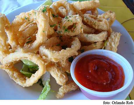 consumir calamar