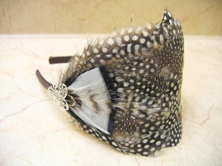 Banda de plumas 1