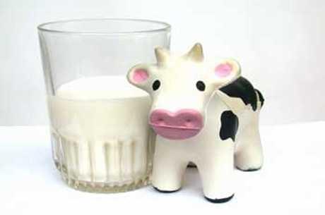 La leche de vaca y los bebés